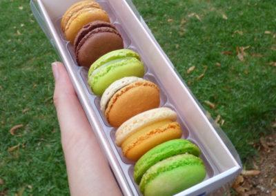 macarons philippe rigollot